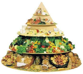 نگهداري مواد غذايي در يخچال و فريزر